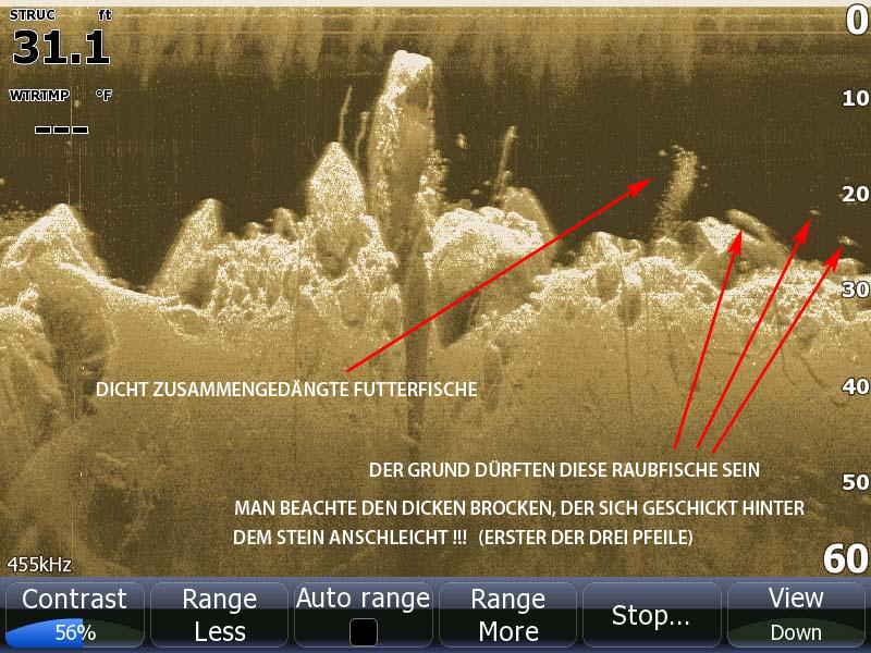Lowrance DownScan Bild auf HDS