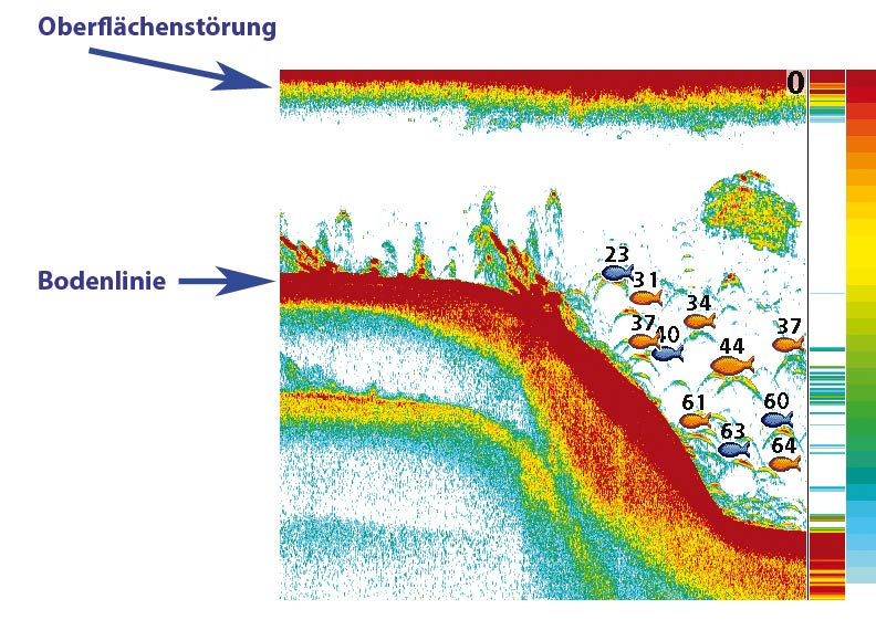 Oberflächenstörung auf Echolot und Fischfinder