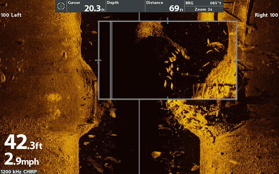 Mega Side Imaging Bild mit jagenden Barschen