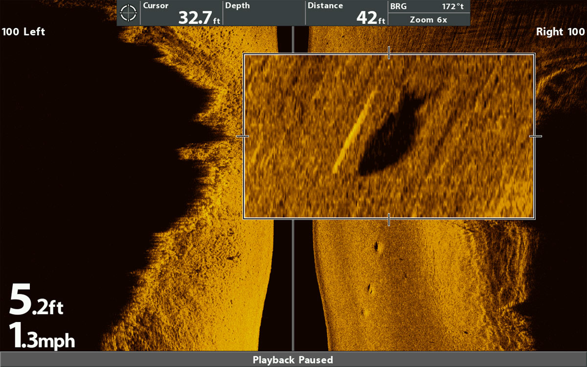 Barsch im Humminbird Mega Side Imaging