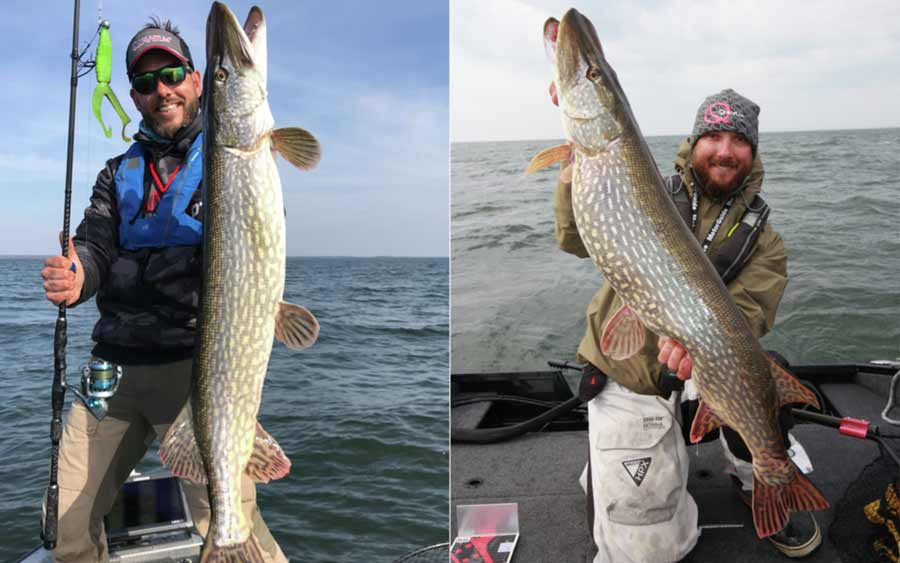 Spinlock Rettungswesten sind perfekt für Angler. Der Grund: Die Bewegungsfreiheit und der Tragekomfort sind unvergleichlich.